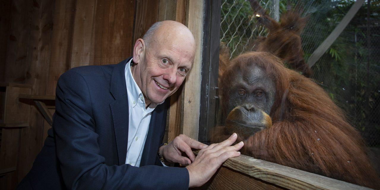 Carers launch campaign to save the planet – and orangutans