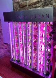 Current Supports Welsh Community CEA Initiative With Arize® Horticulture Lighting Gift
